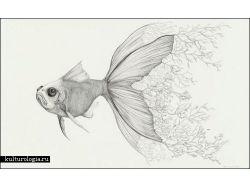 Животные рисунки карандашом