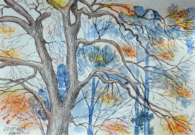 Картинка о осени карандашом, белки гифки