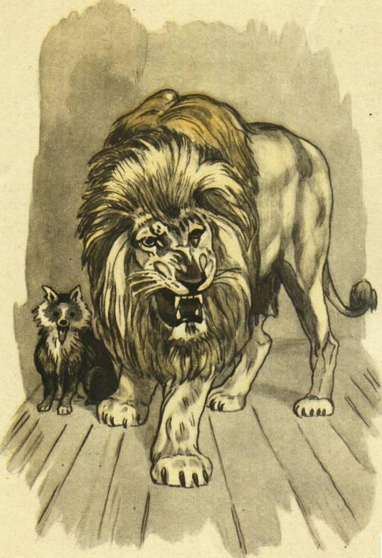 Картинки из мультика лев и собачка