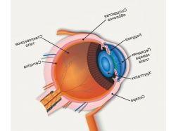 Картинка глаза человека