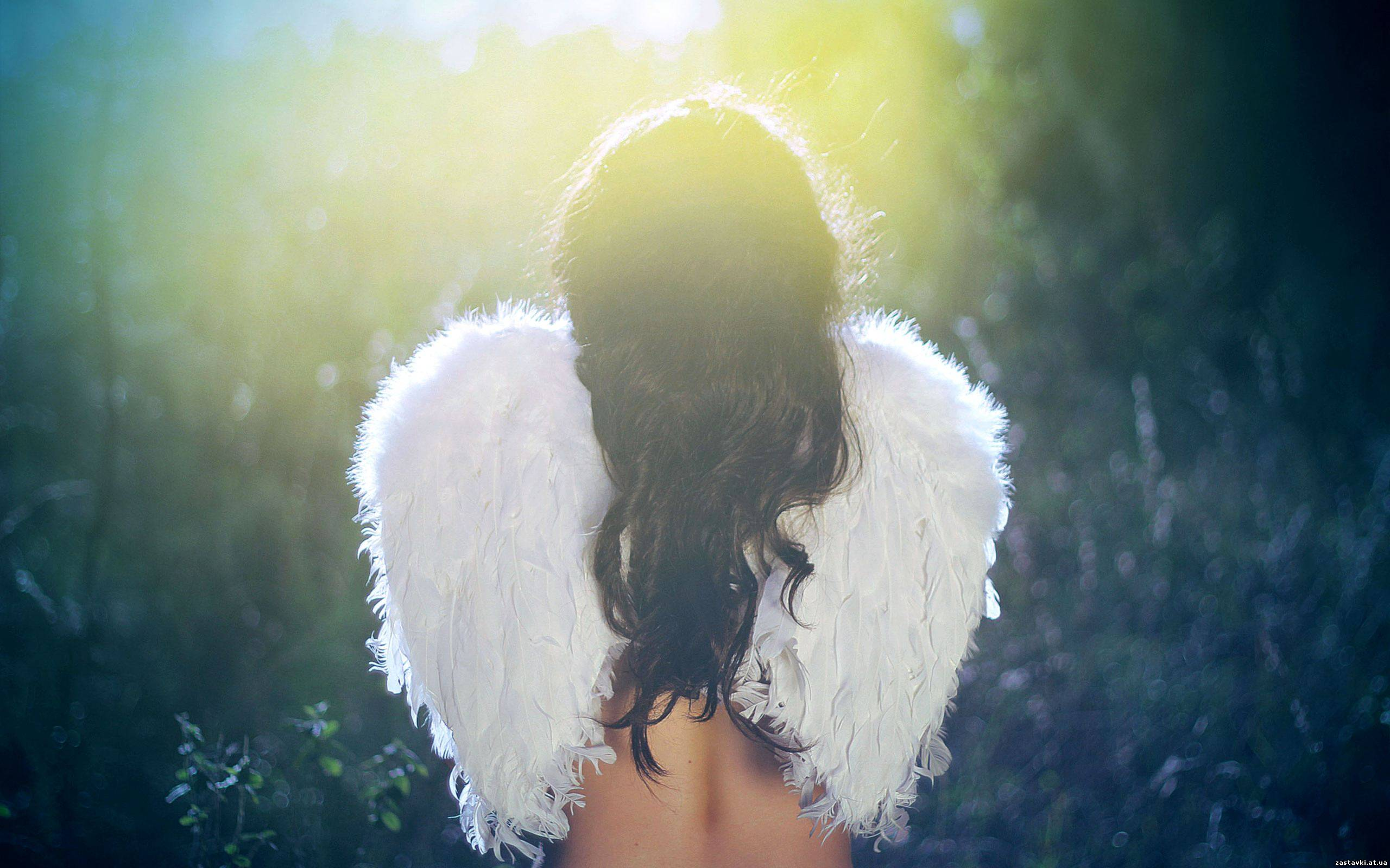 Красивые картинки ангелов о любви