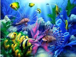 Обои подводный мир