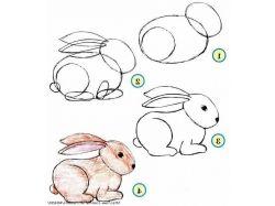 Картинки животные карандашом 6