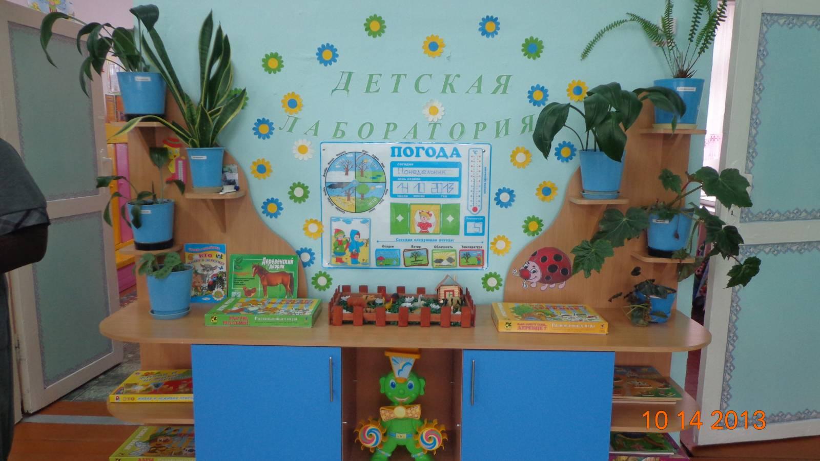 Оформление уголка природы в детском саду своим руками фото 387