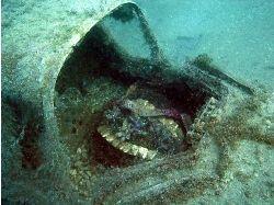 Фото корабли затонувшие