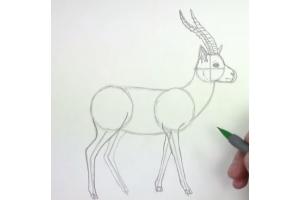 Как научиться рисовать осень