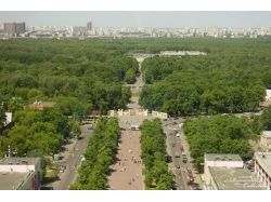 Парк сокольники фото