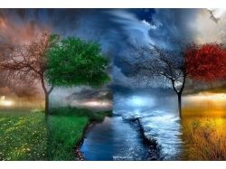 Картинки осень зима весна лето