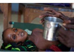 Голодные дети фото африки