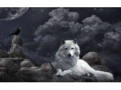 Обои на рабочий стол волки