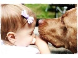 Животные и дети фото