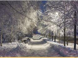 Красивые фото зима фото 4