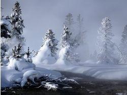Красивые фото зима фото 6