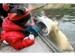 Фото дети и животные