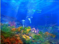 Международный конкурс подводный мир донецк