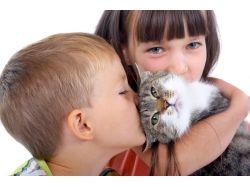 Животные дети картинки