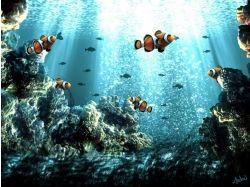 Алавар подводный мир скачать бесплатно