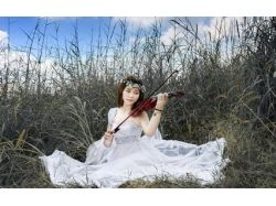 Картинки скрипка 1