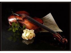 Картинки скрипка 4