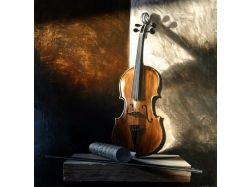 Картинки скрипка 5