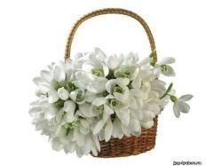 Цветы любовь картинки 1