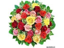 Цветы любовь картинки 4