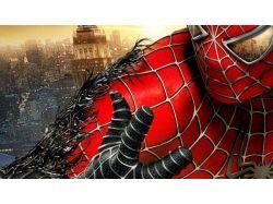 Человек паук картинка 2