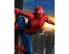 Человек паук картинка 3