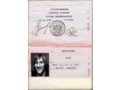 Паспорт картинки 2