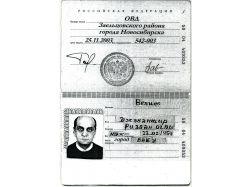 Паспорт картинки 5