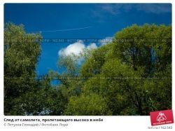 Фото самолета в небе 5