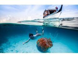 Отдых на море картинки 4