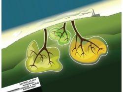Картинки загрязнение воздуха 1