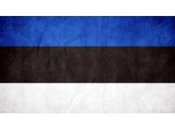 Флаг татарстана картинки 3