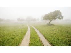 Испания природа картинки 1