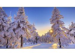 Скачать картинки зима на компьютер 5