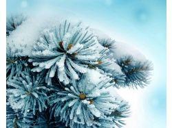 Скачать картинки зима на компьютер 6