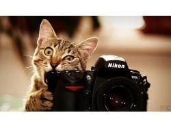 Креативные фото на фотоаппарате зенит 5