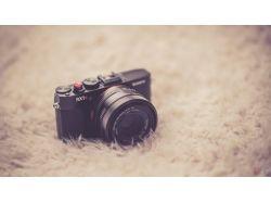 Креативные фото на фотоаппарате зенит 6