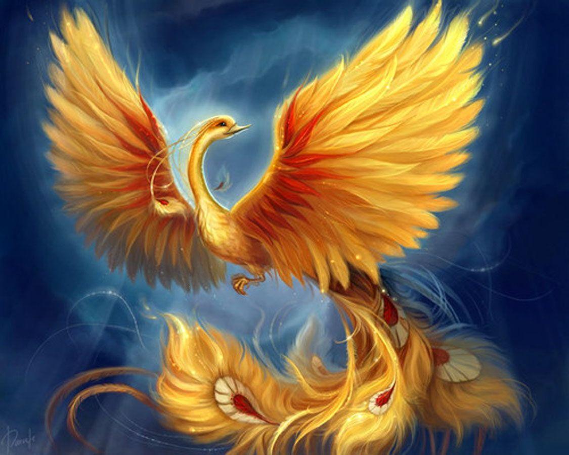 радужные фениксы картинки