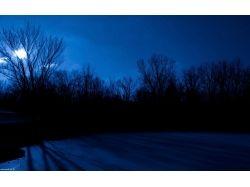Ночное небо картинки 5