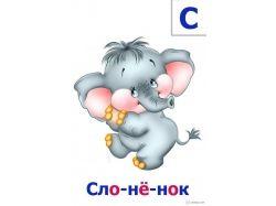 Картинки слон для детей 5