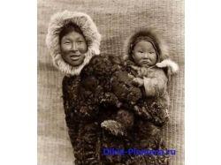 Фото эскимосы 4