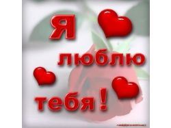 Красивые картинки я люблю тебя 1