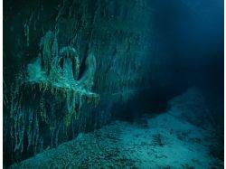 Титаник под водой 5