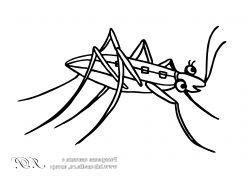 Палеозой насекомые картинки