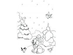 Картинки зима влесу