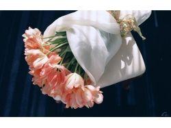 Профессиональные фото цветы в небе