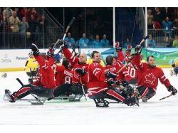 Параолимпийские игры картинки