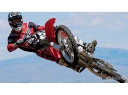 Тёлки и мотоциклы фото